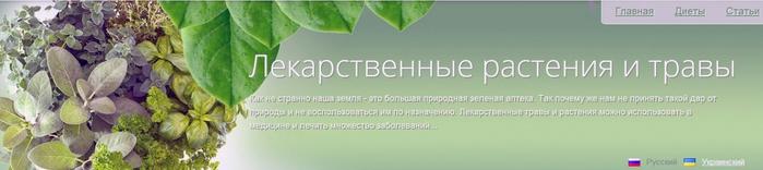 лекарственные растения как правильно собрать приготовить что лечат лекарственными растениями,/4682845_ (700x156, 87Kb)
