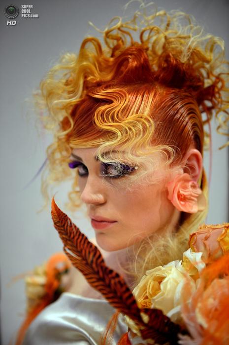 международный фестиваль парикмахерского искусства фото  2 (465x700, 433Kb)
