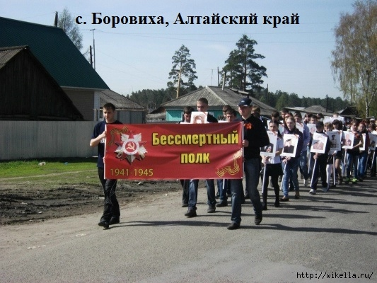 Боровиха Алтайский край (533x400, 169Kb)