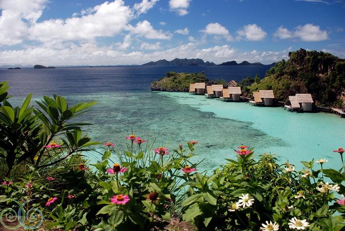 архипелаг Раджа-Ампат фото 1 (700x468, 317Kb)