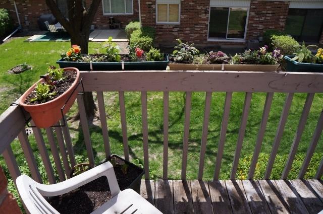 Garden balcony low maintenance - champsbahrain.com.
