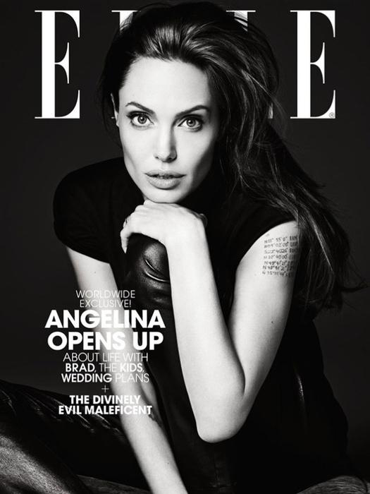 Анджелина Джоли фото 1 (525x700, 173Kb)