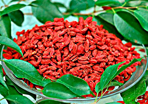 goji-berry-recept (520x364, 71Kb)
