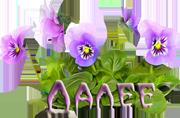 4453296_111247988_f2c32503806b (180x118, 49Kb)