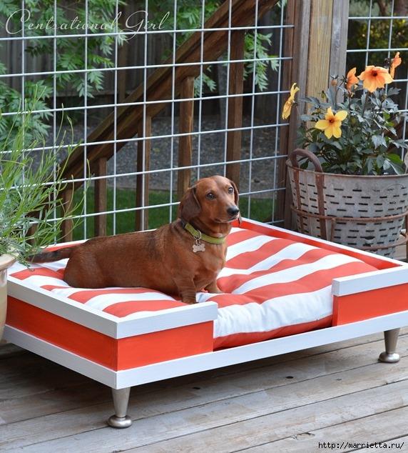 Кроватка в стиле модерн. Для собачки (8) (572x634, 281Kb)