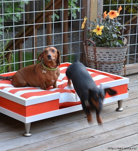 Кроватка в стиле модерн. Для собачки (12) (572x623, 258Kb)