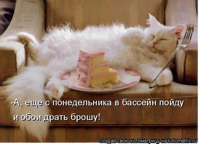 kotomatritsa_b (639x462, 119Kb)