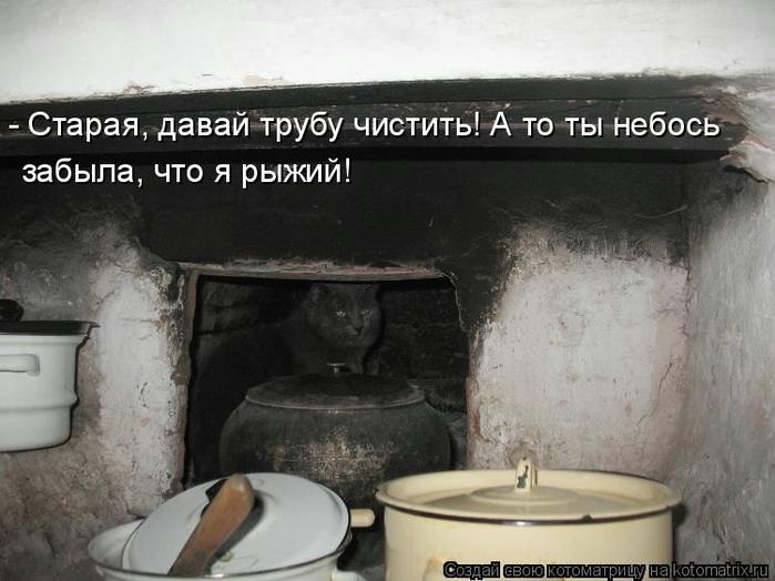 kotomatritsa_Q (700x524, 215Kb)