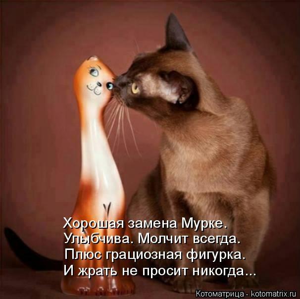 kotomatritsa_Uu (606x604, 116Kb)