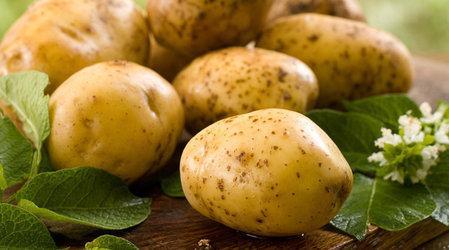 Лечебные свойства картофеля и картофельная косметика (1) (449x250, 107Kb)