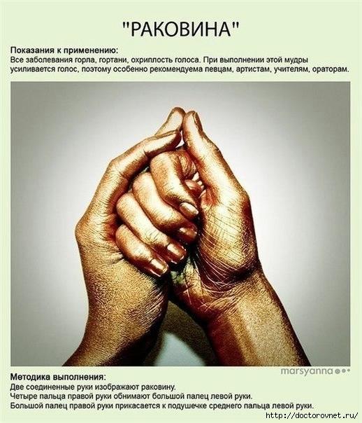 Мудры - йога для пальцев2 (518x604, 175Kb)