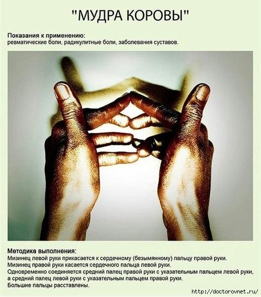 РњСѓРґСЂС‹8 (518x588, 173Kb)