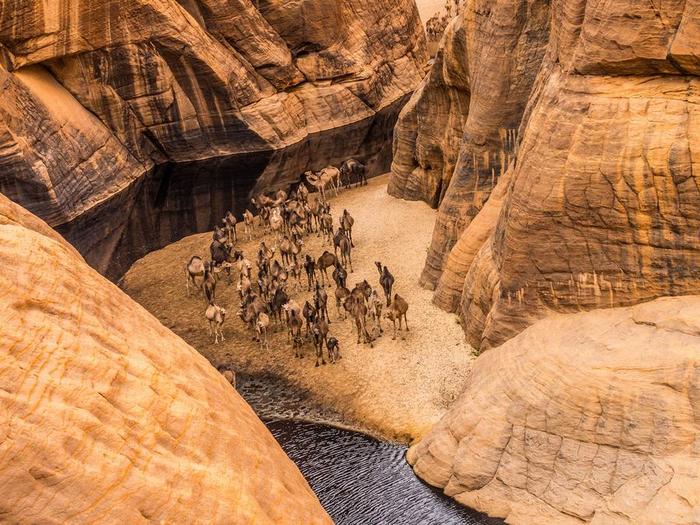 Гельта д'Аршей пустыня сахара фото 1 (700x525, 506Kb)