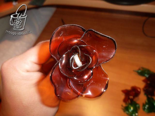 Как сделать изотермический Розы из пластиковых бутылок