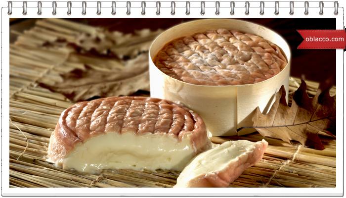 Как сделать итальянский сыр пекорино в домашних условиях. Рецепт с фотографиями