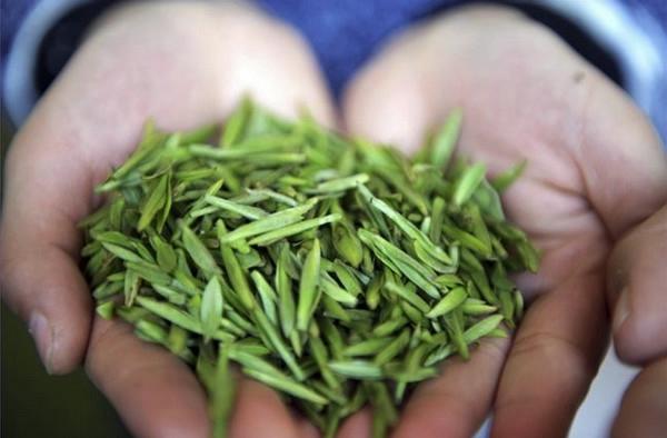 tea-3 (600x394, 101Kb)
