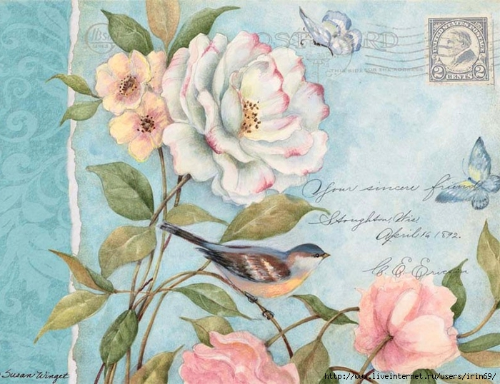 deluxe-note-cards-cottage-bird-2080500-1 (700x538, 312Kb)