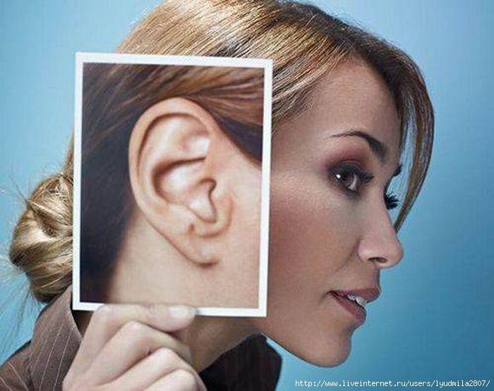 1-1-ears (700x555, 156Kb)