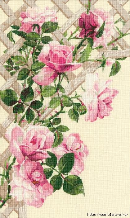 Stitchart-roza-na-reshetke0 (419x700, 308Kb)