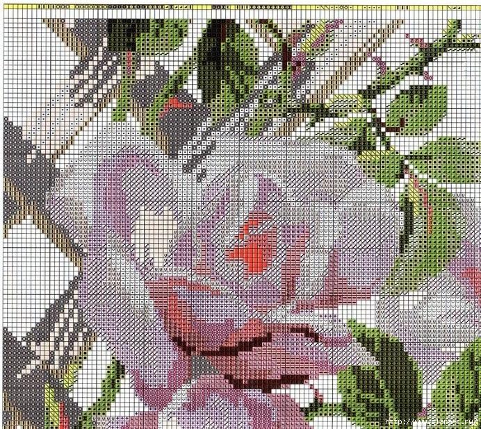 Stitchart-roza-na-reshetke5 (692x618, 603Kb)
