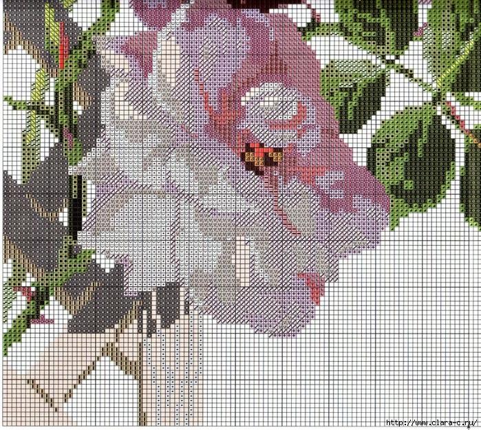 Stitchart-roza-na-reshetke7 (700x625, 570Kb)