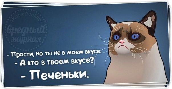 1383158328_frazochki-24 (604x314, 94Kb)