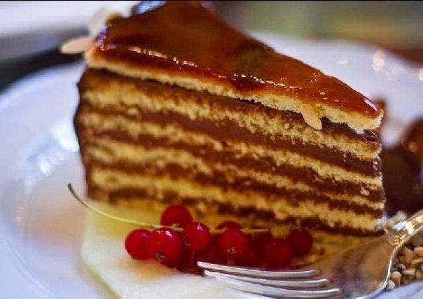 торт добош (604x427, 200Kb)