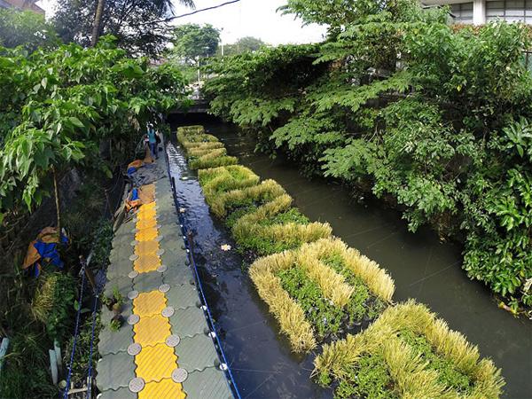 река пасиг филиппины фото 1 (600x450, 391Kb)