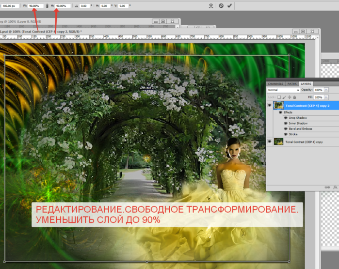 2014-06-08 18-28-29 Без имени-31.psd @ 100% (Tonal Contrast (CEP 4) copy 2, RGB 8)   (700x555, 589Kb)