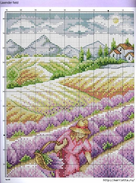 ЛАВАНДА. Схемы вышивки крестом (10) (519x700, 448Kb)