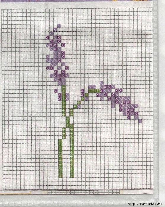 ЛАВАНДА. Схемы вышивки крестом (24) (558x700, 411Kb)
