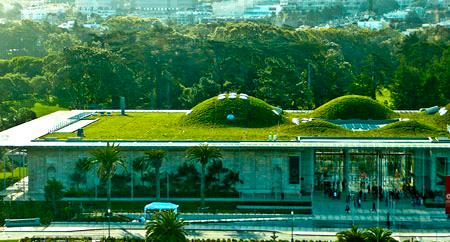Зеленые крыши – модно, стильно, экологично!