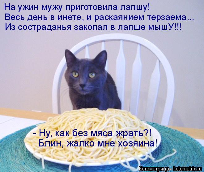kotomatritsa_Cb (660x559, 299Kb)