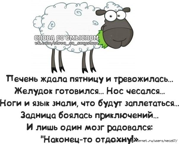 1386269564_frazochki-14 (604x487, 130Kb)