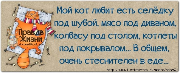 1386269456_frazochki-4 (604x247, 138Kb)