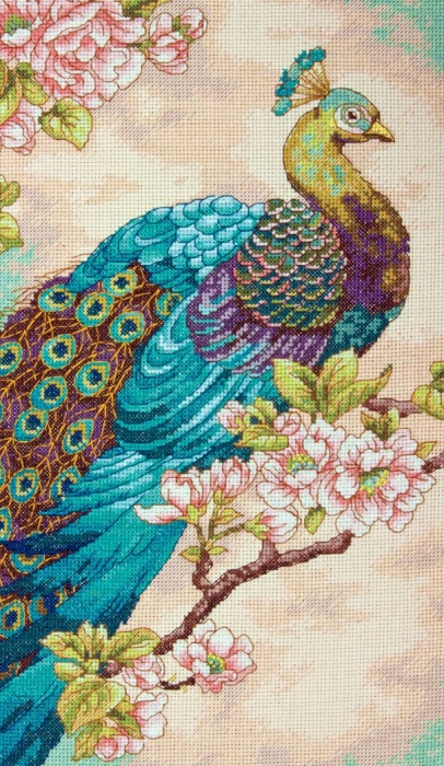 Stitchart-Indian-Peacock0 (406x700, 204Kb)