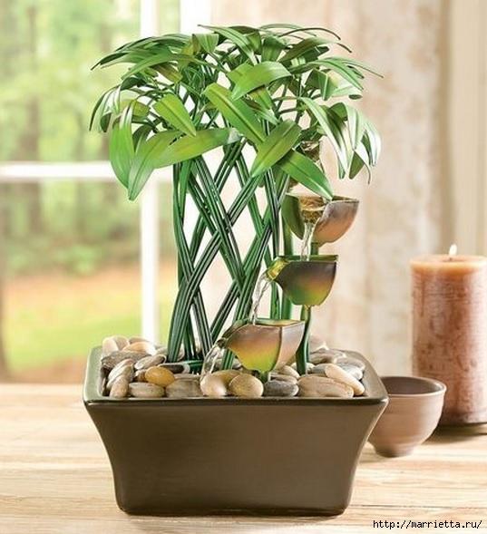 Комнатный бамбук. Красивые идеи и уход за бамбуком в воде (21) (537x589, 181Kb)