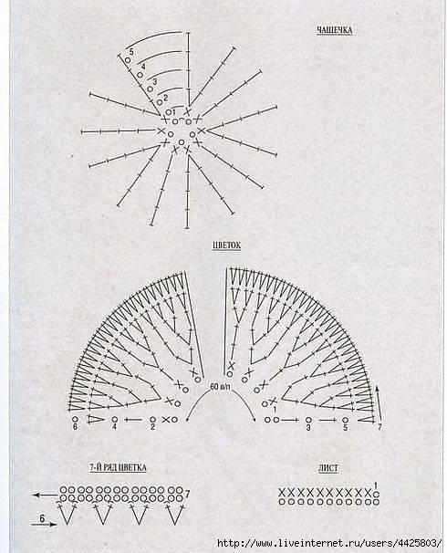 Описание работы гвоздики