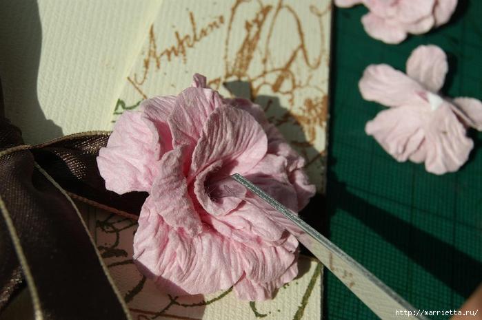 Бумагопластика. Цветочки в торфяных горшочках (29) (700x465, 217Kb)