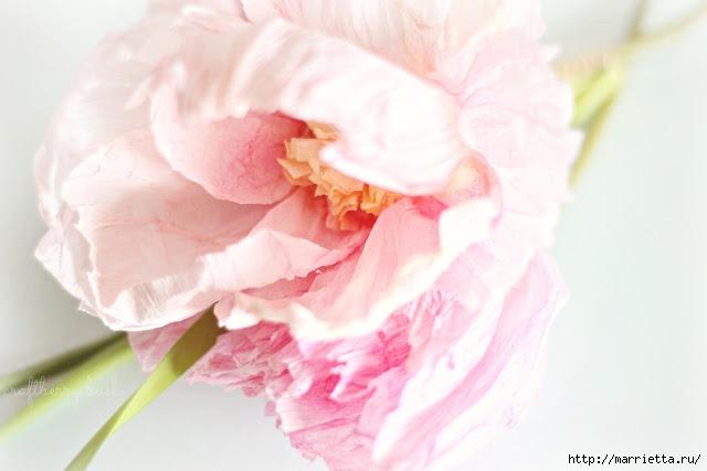 цветы из креповой бумаги (5) (640x427, 108Kb)
