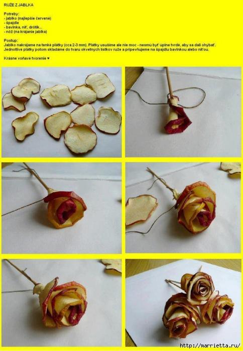 Rosas y cestas de jamón, tomate tulipanes y otras cosas interesantes (12) (484x700, 231Kb)