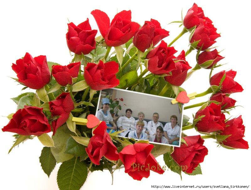 фото медсестры и врачи
