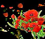 1901311_0_73e81_3b314556_S (150x129, 30Kb)