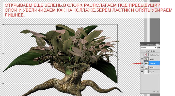 2014-06-15 04-05-35 Без имени-35.psd @ 100% (Layer 4, RGB 8)   (700x386, 309Kb)