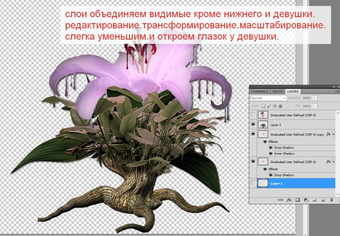 2014-06-15 04-31-57 Без имени-35.psd @ 100% (Layer 1, RGB 8)   (700x487, 388Kb)