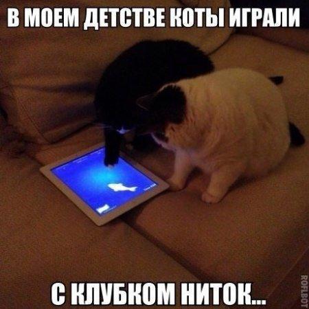 smeshnie_kartinki_140257347055 (450x450, 158Kb)