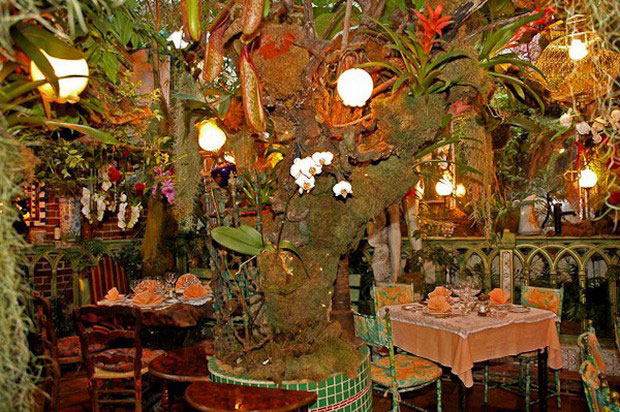 tsvetochnyiy-restoran-Mas-Proven--al_6 (700x482, 365Kb)