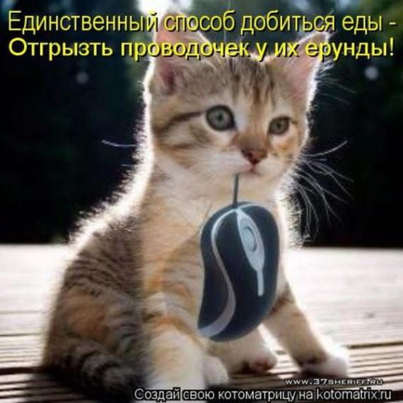 1413010502_01 (570x570, 72Kb)