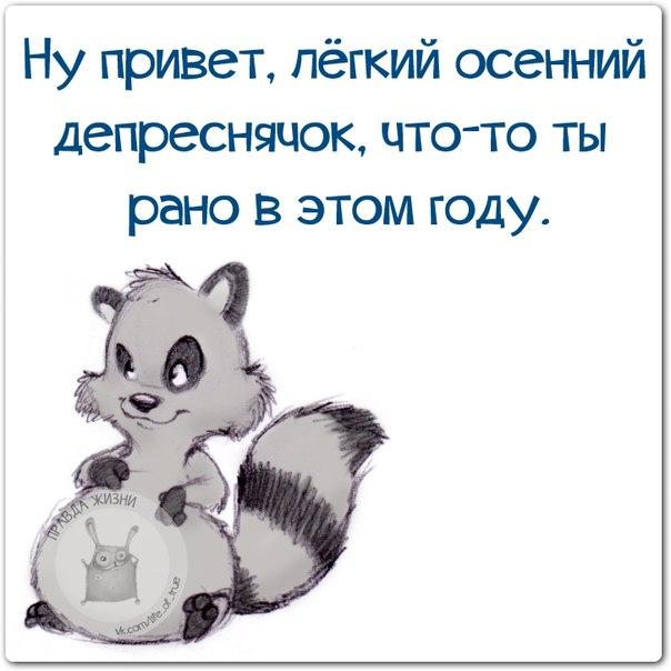 3821971_osennii_depresnyak (604x604, 54Kb)