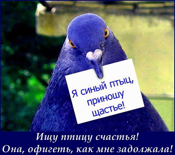 Ashampoo_Snap_2014.10.05_02h06m42s_041_ (700x619, 277Kb)